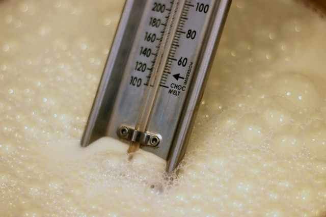 yogurt_thermometer